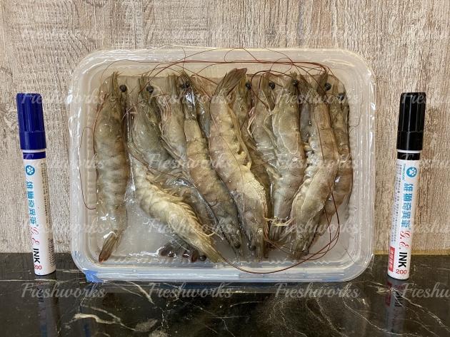 吃乳酸菌長大的 - 活凍國產好蝦【產銷履歷】 1