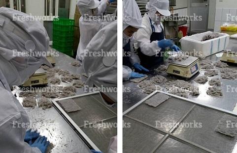 (生凍)台灣本產100%無添加吻仔魚 3